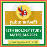 12TH BIOLOGY STUDY MATERIALS 2021